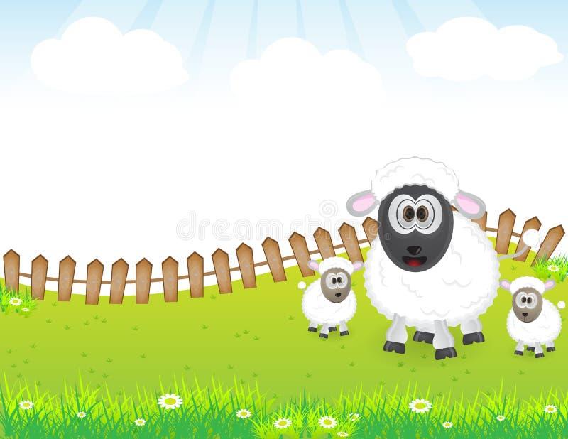 Familia animal linda de las ovejas ilustración del vector