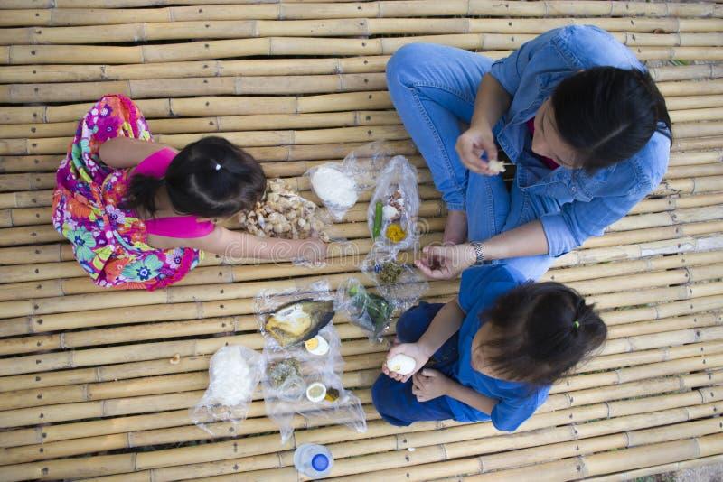 Familia asiática que tiene comida campestre al aire libre fotografía de archivo libre de regalías
