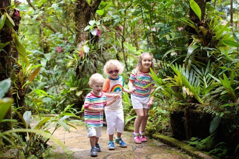 Familia con los niños que caminan en selva imagen de archivo libre de regalías