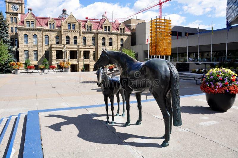 Familia de caballos, en plaza municipal imagenes de archivo