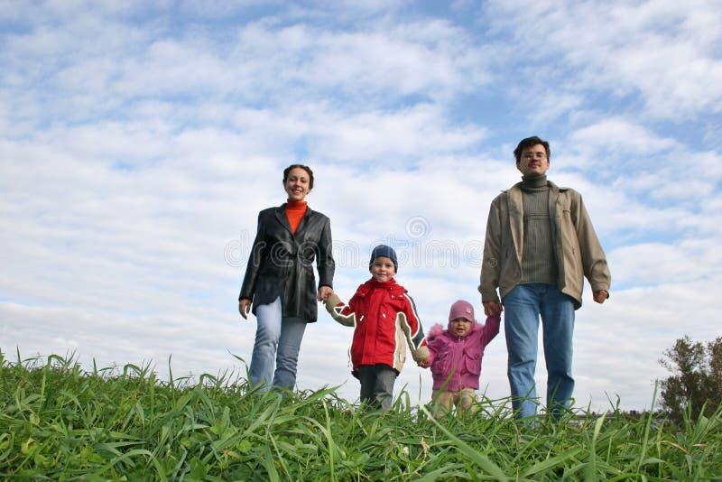 Familia de cuatro miembros en hierba imágenes de archivo libres de regalías
