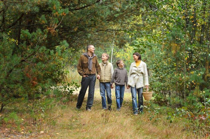 Familia de cuatro miembros en parque imagen de archivo libre de regalías