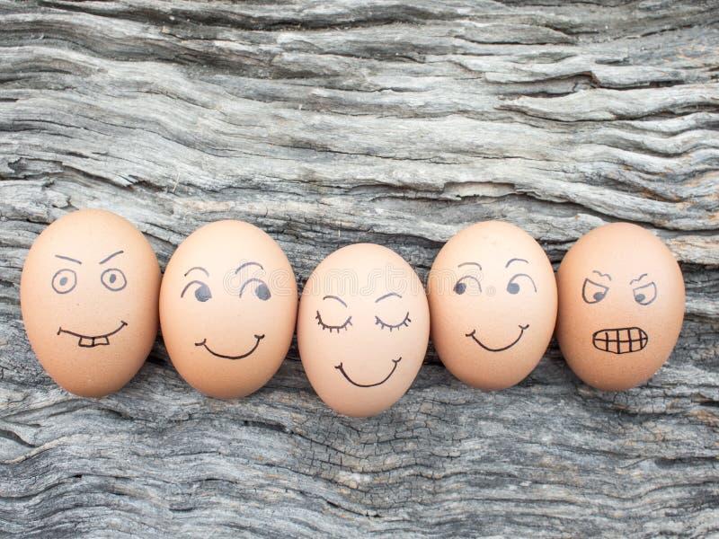 Familia de huevos puestos en piso de madera fotografía de archivo libre de regalías