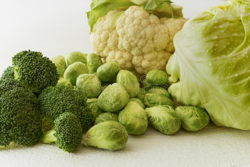 Familia de la col Coles de Bruselas, bróculi, coliflor, y col verde imagen de archivo