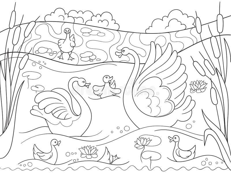 Familia de la historieta del libro de colorear de los niños de cisne en la naturaleza ilustración del vector