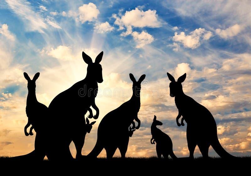 Familia de la silueta de canguros fotografía de archivo
