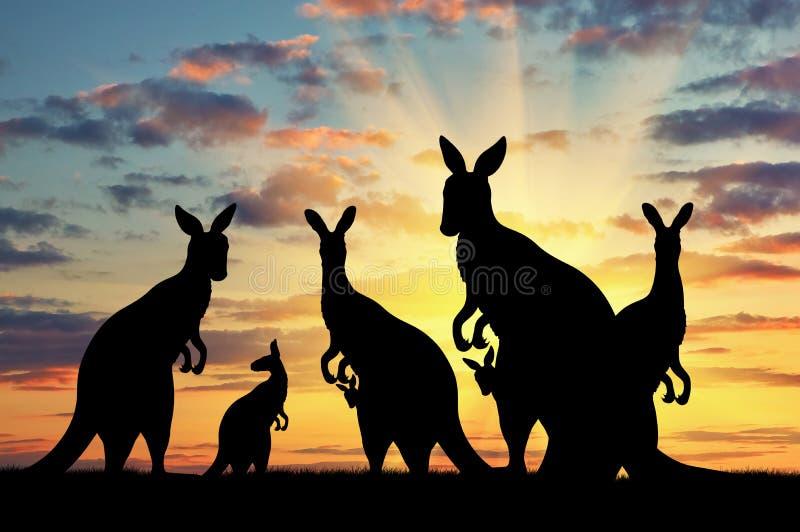 Familia de la silueta de canguros imagen de archivo libre de regalías