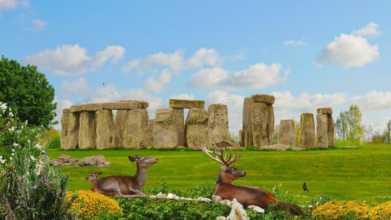 Familia de los ciervos en Stonehenge fotos de archivo libres de regalías