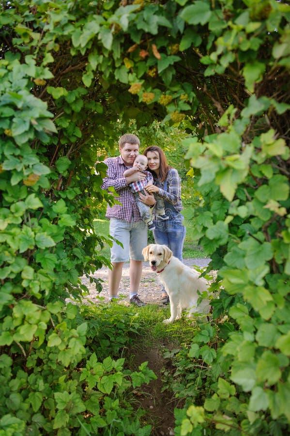 Familia de tres con un perro en el parque, la madre y el padre deteniendo a un niño fotos de archivo libres de regalías