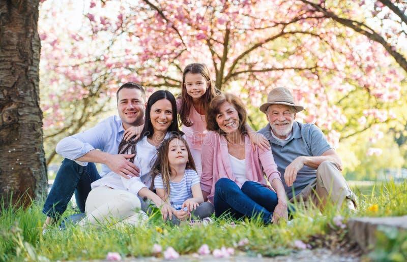 Familia de tres generaciones sentada en la naturaleza de primavera, mirando la cámara imagen de archivo libre de regalías