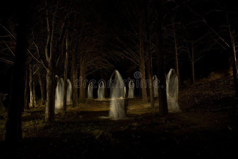 Familia del fantasma en el bosque oscuro imágenes de archivo libres de regalías