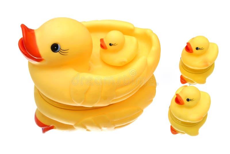 Download Familia del pato foto de archivo. Imagen de lago, agua - 183392