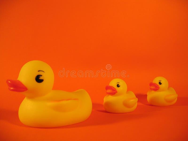 Familia Ducky De Goma I Fotos de archivo libres de regalías
