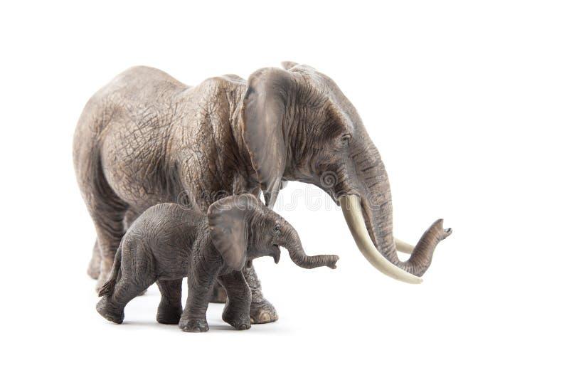 Familia elefante en blanco foto de archivo