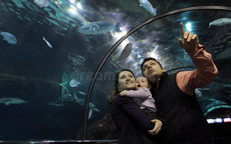Familia en el acuario de cristal foto de archivo libre de regalías