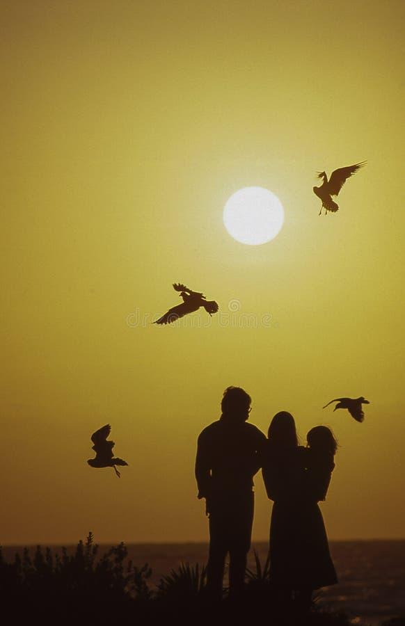 Familia en la salida del sol imagen de archivo libre de regalías