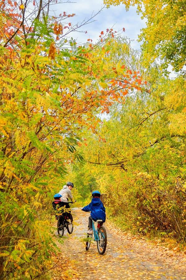 Familia en las bicis en parque del otoño, ciclo del padre y de los niños fotografía de archivo libre de regalías