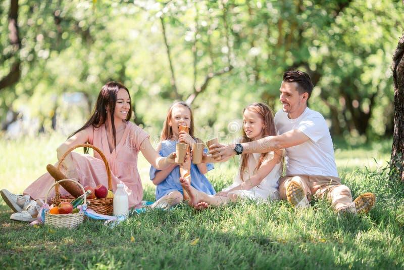 Familia feliz en una comida campestre en el parque en un d?a soleado imagenes de archivo