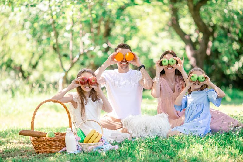 Familia feliz en una comida campestre en el parque en un d?a soleado imagen de archivo