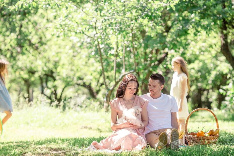Familia feliz en una comida campestre en el parque en un d?a soleado fotos de archivo libres de regalías
