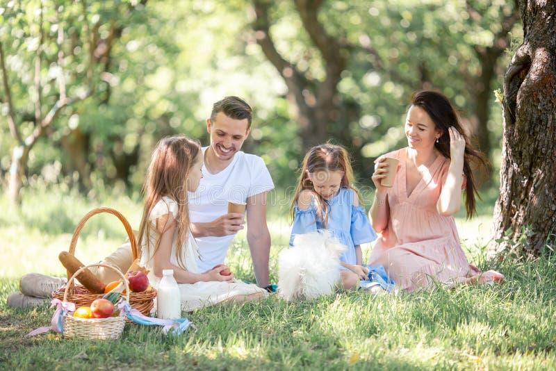 Familia feliz en una comida campestre en el parque en un d?a soleado foto de archivo libre de regalías
