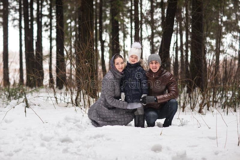 Familia feliz que camina en un parque del invierno imagen de archivo