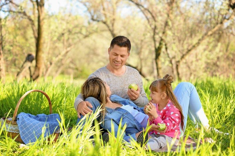 Familia feliz que come manzanas en una comida campestre en parque imagen de archivo