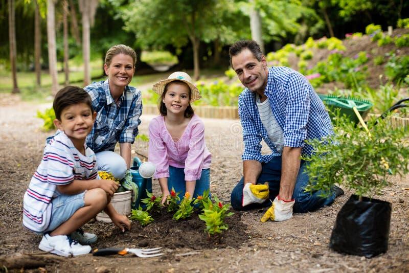 Familia feliz que cultiva un huerto junto fotografía de archivo