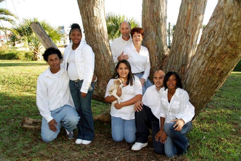 Familia grande de la raza mezclada fotos de archivo libres de regalías