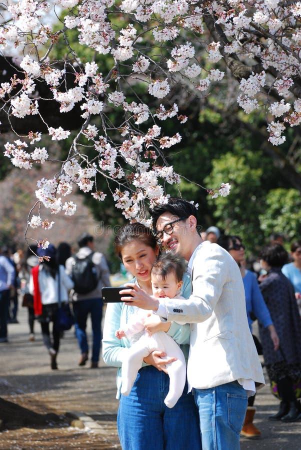 Familia japonesa feliz que toma la foto debajo de las flores de cerezo imagen de archivo
