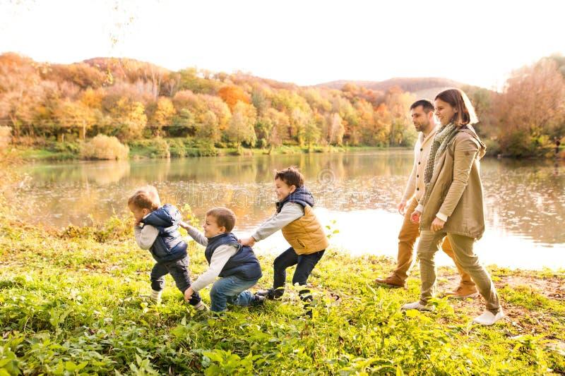 Familia joven hermosa en un paseo en bosque del otoño foto de archivo