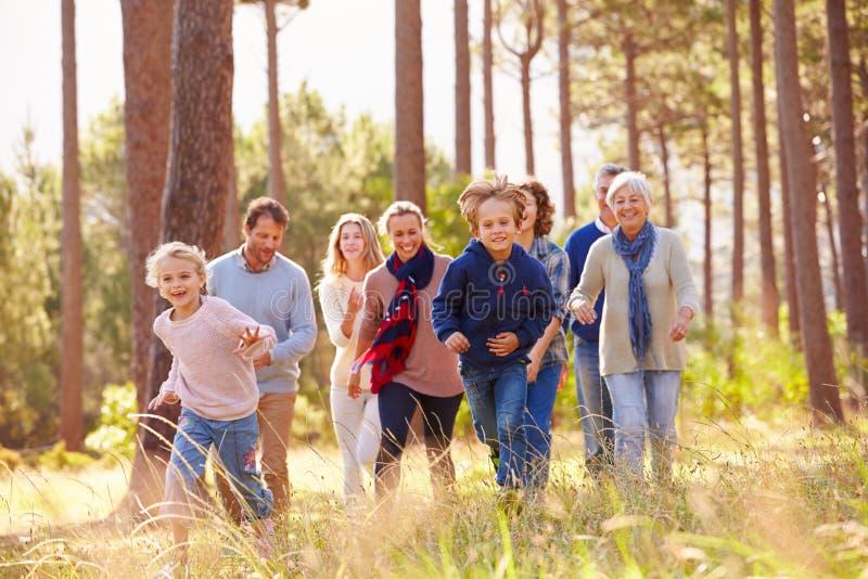 Familia multigeneración que camina en el campo, funcionamiento de los niños foto de archivo
