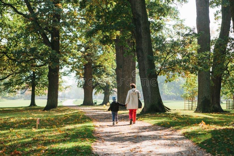 Familia para un paseo La madre con su hijo en ropa casual está caminando alrededor de parque soleado hermoso entre árboles e hier fotografía de archivo libre de regalías