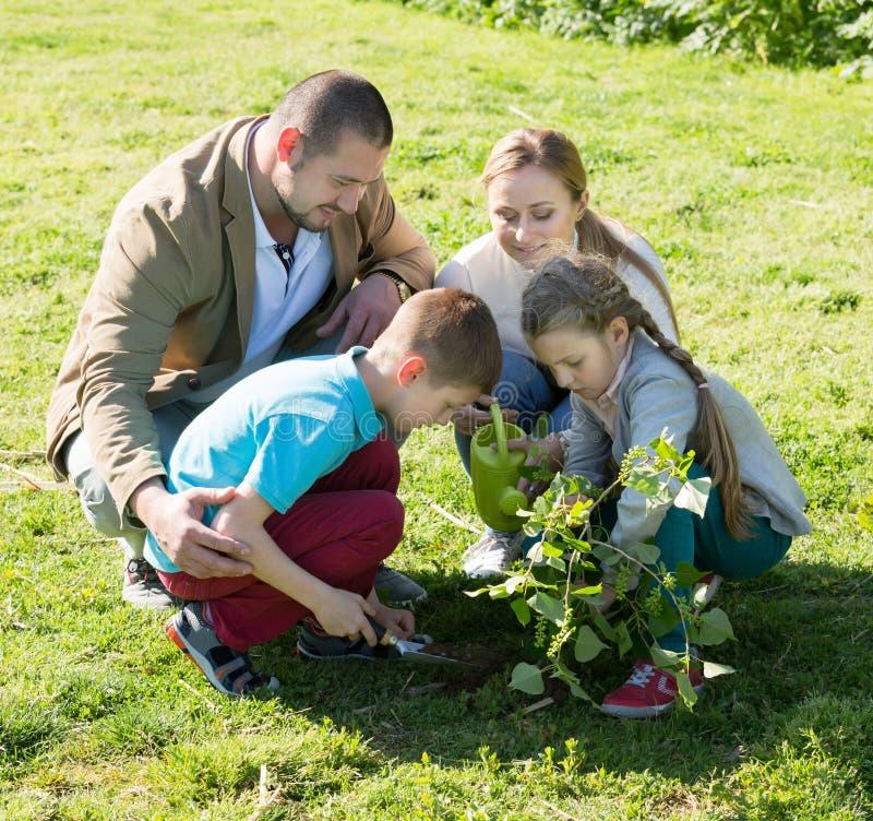 Familia positiva con dos niños que colocan un nuevo árbol imagenes de archivo
