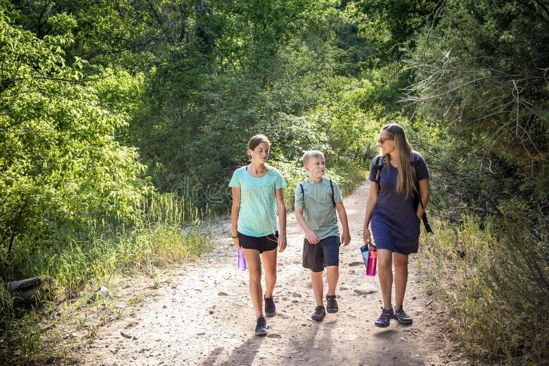 Familia que camina en un rastro de montaña escénico que habla el uno al otro imagen de archivo libre de regalías