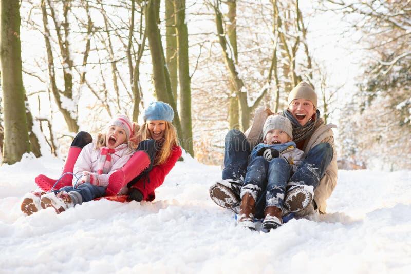 Familia Sledging a través del arbolado Nevado fotos de archivo