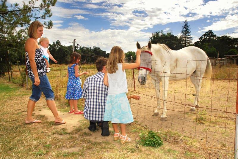 Familia y caballo fotos de archivo