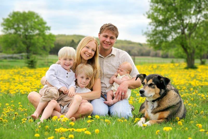 Familia y perro casero felices en prado de la flor imagenes de archivo