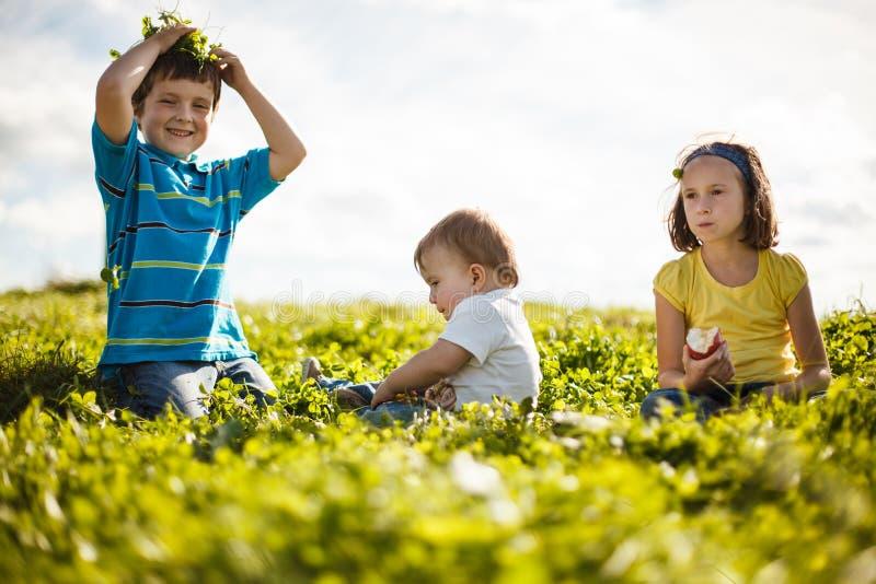Familie auf dem Gras stockfotos