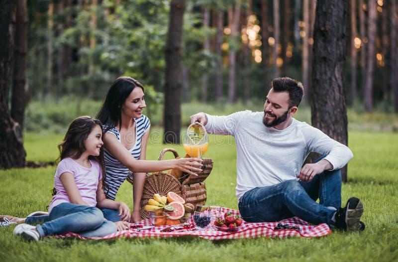 Familie auf Picknick lizenzfreie stockfotografie