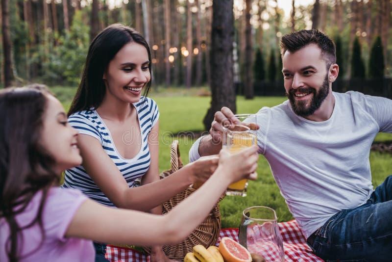 Familie auf Picknick lizenzfreie stockfotos