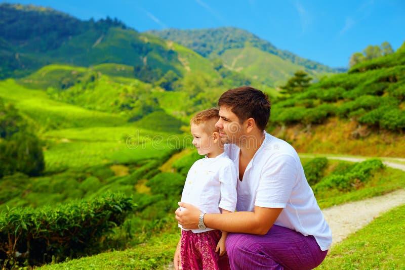 Familie, die Ansicht über Teeplantage, Cameron Highlands genießt stockbild
