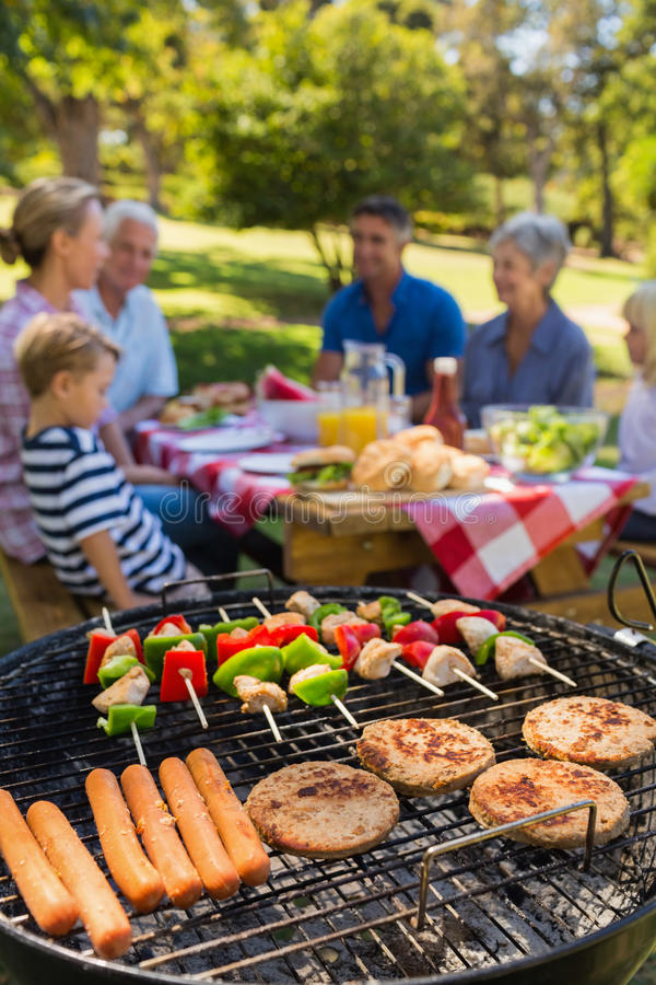 Familie die barbecue in het park doen stock foto's