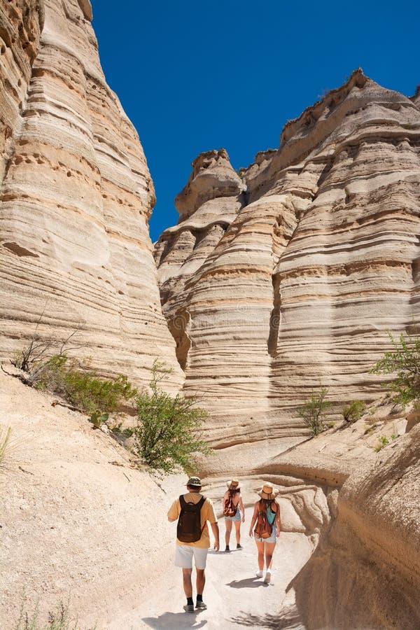 Familie, die in den New Mexiko-Bergen auf Sommerferien wandert lizenzfreies stockfoto