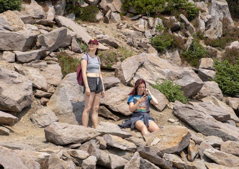 Familie, die einen Bruch auf einer Spur auf einer Wanderung im Berg Rainier National Park, Washington genießt lizenzfreies stockfoto