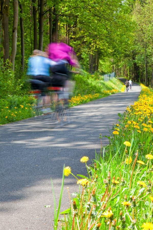 Familie die fiets van rit in het land genieten royalty-vrije stock fotografie