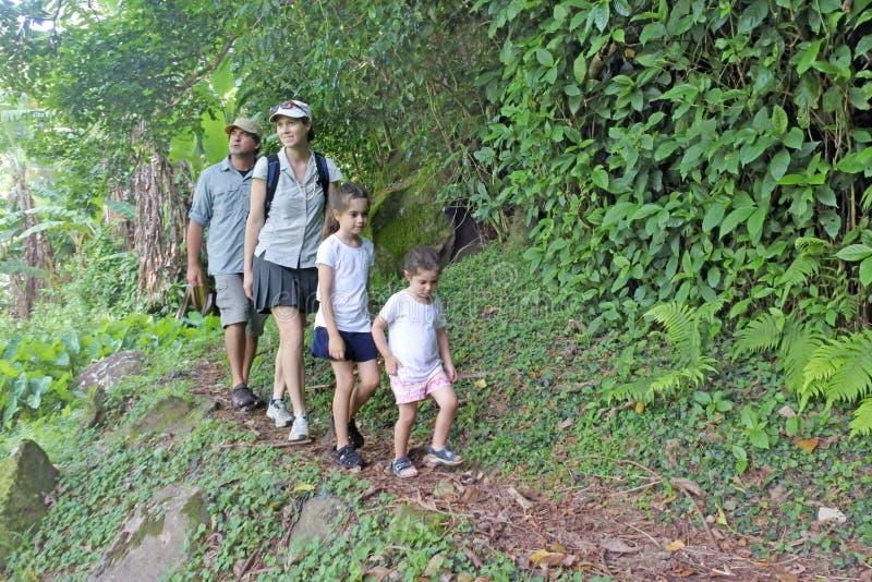 Familie die het Dwarseilandspoor in het regenwoud van een tro wandelen stock foto