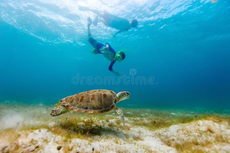 Familie, die mit Meeresschildkröte schnorchelt lizenzfreie stockbilder