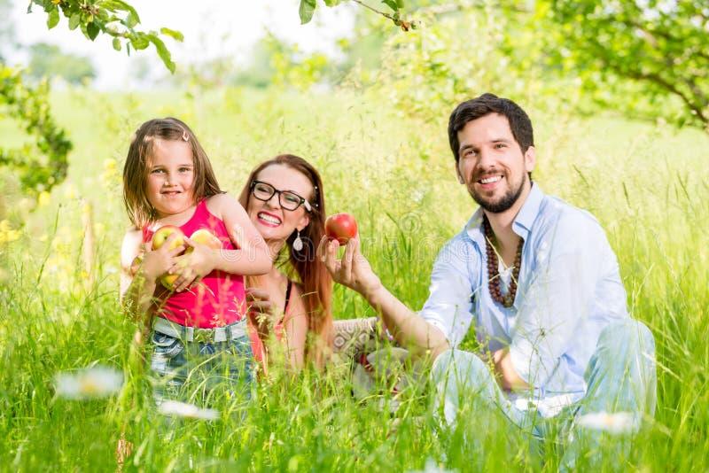 Familie, die Picknick auf Wiese mit gesunder Frucht hat lizenzfreies stockfoto