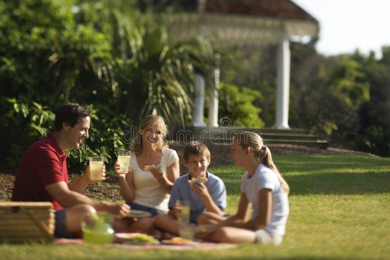 Familie die picknick in park heeft. royalty-vrije stock afbeeldingen